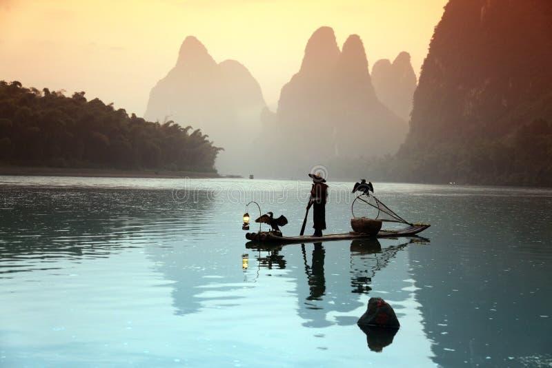 Chiński mężczyzna połów z kormoranów ptakami wewnątrz obraz royalty free