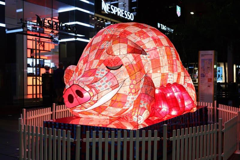 Chiński nowego roku zodiak - świnia zdjęcia royalty free