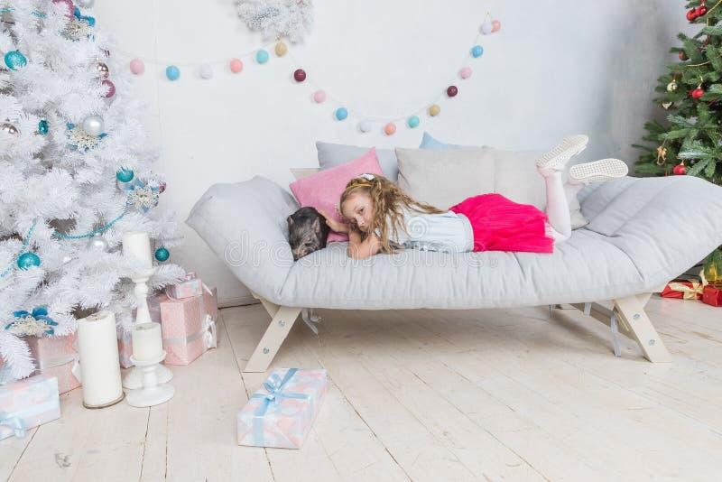 Chiński nowy rok 2019 szczęśliwa świnio Rok świnia Śliczna blondynki dziewczyna z dziecko odświętności chińczyka świniowatym nowy obraz stock