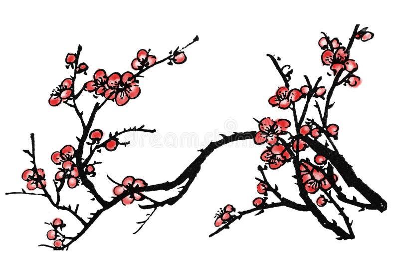 Chiński obraz śliwkowy okwitnięcie royalty ilustracja