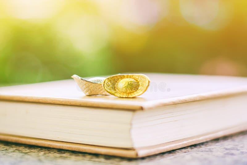 Chiński złoto, srebra yuanbao i sycee łódkowaty ingot na książce lub obraz royalty free