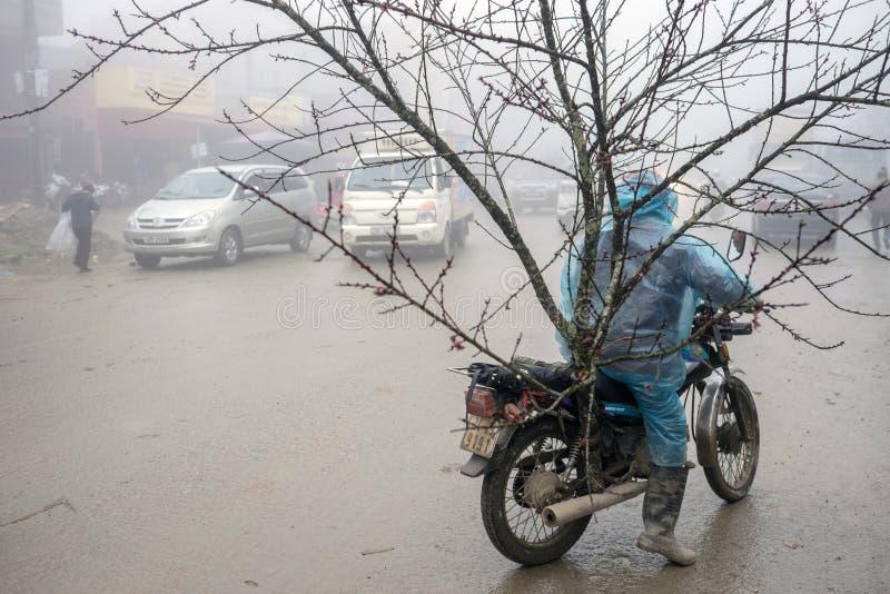 Chińskie nowy rok dekoracje w Wietnam zdjęcie stock
