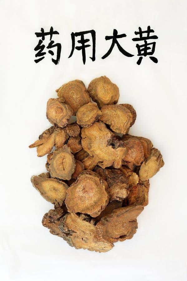 Chińskiego rabarbaru korzenia ziele zdjęcia stock