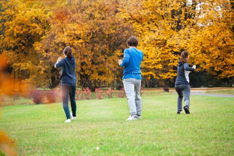 Chi άσκησης tai στο πάρκο στοκ φωτογραφία