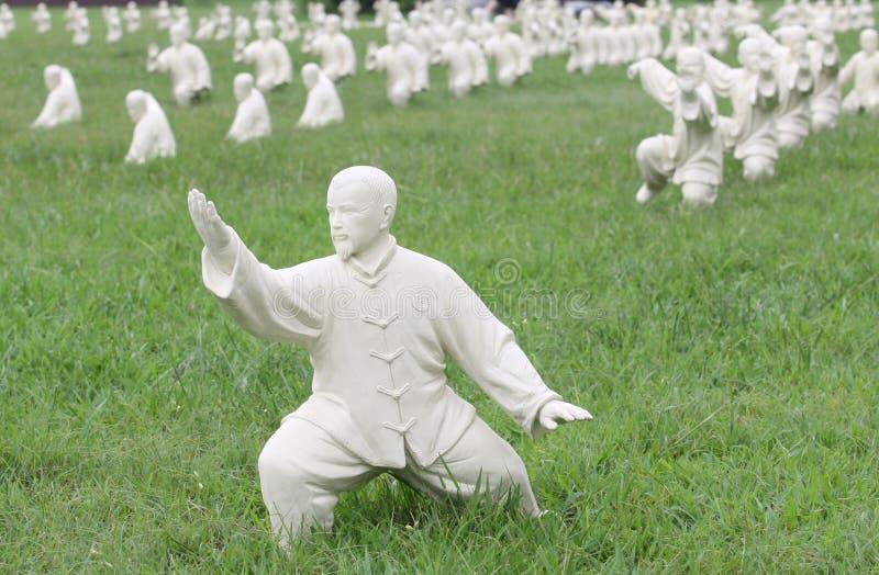 'chi' Chuan del Tai immagine stock libera da diritti