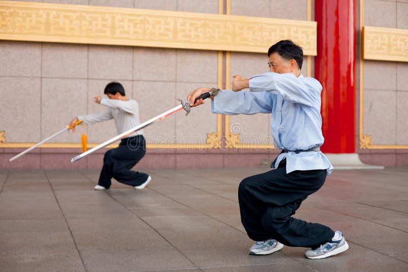 chi chuan kuca tai zdjęcie royalty free