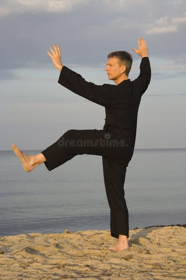 Chi de Tai - posez l'énergie avec le talon gauche photo stock