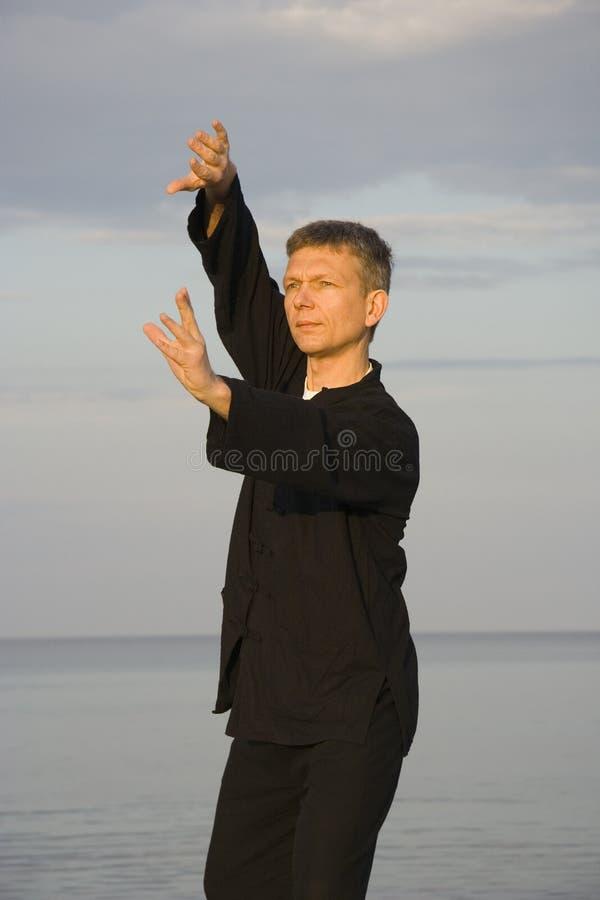 'chi' del Tai - di posizione del ventilatore parte posteriore attraverso fotografie stock libere da diritti