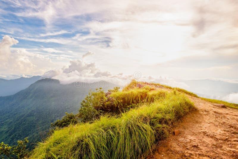 'chi' Fa Forest Park al tramonto, Tailandia di Phu fotografia stock libera da diritti