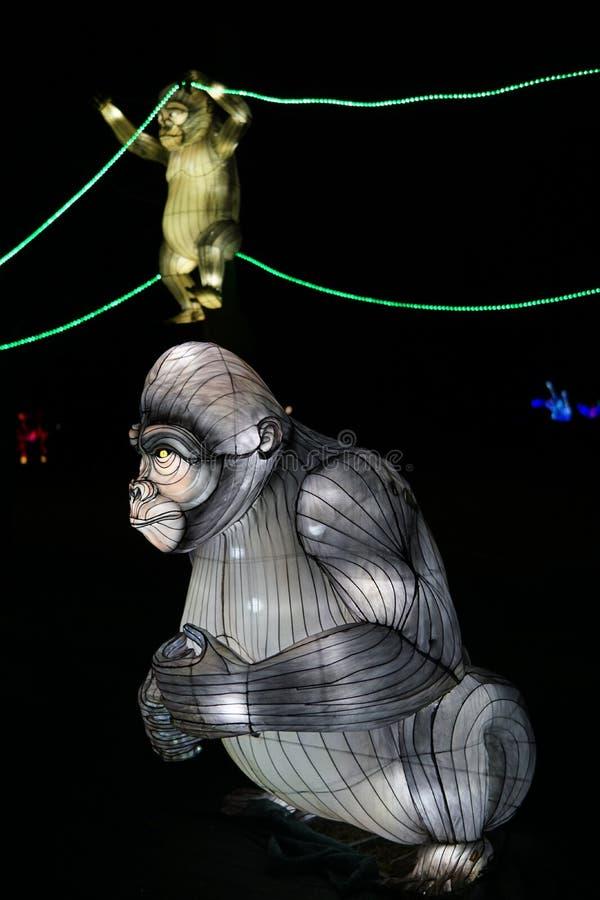 chi?ski festiwalu latarnia fotografia stock