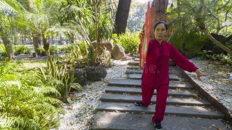 Chi thaïlandais photos stock