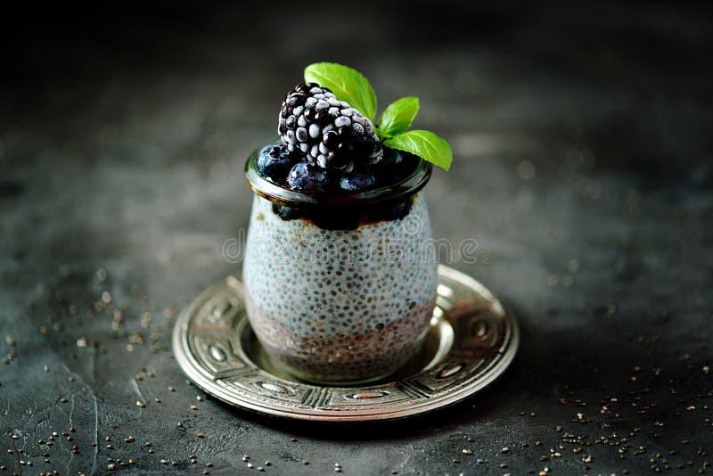 Chia种子布丁用蜂蜜、冷冻蓝莓和黑莓 可口和健康有机点心 库存照片