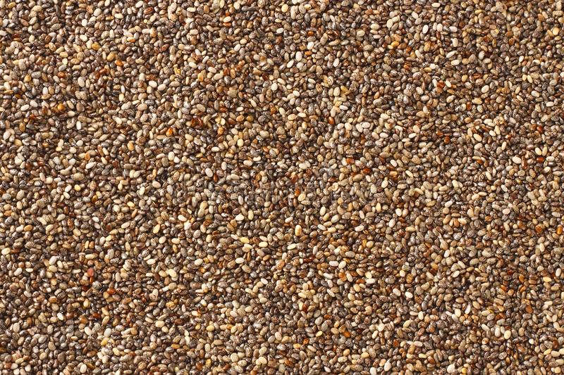 Chia injecte le fond Chia Seeds Texture Vue sup?rieure photo stock
