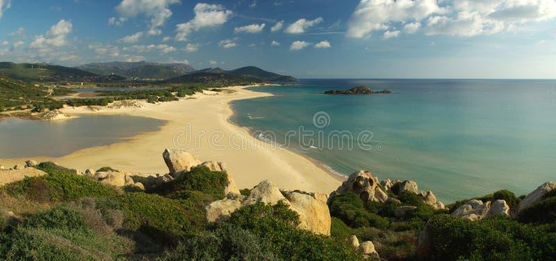 chia na plaży obrazy royalty free