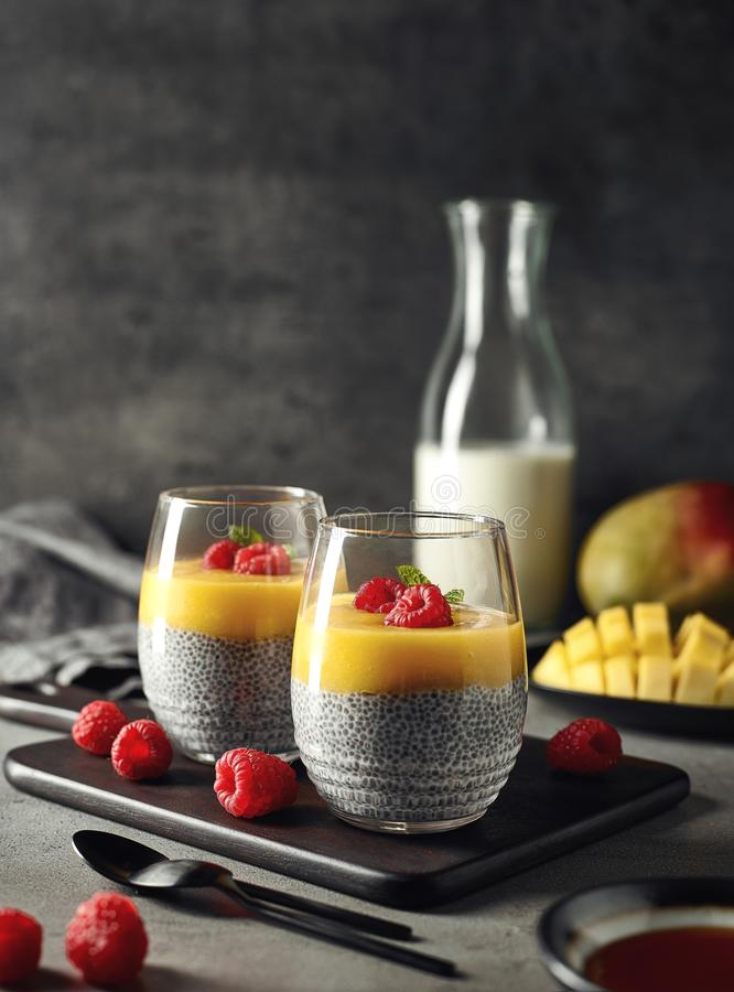 Download Chia Pudding With Mango Sauce Stock Photo - Image of food, fruit: 119949078