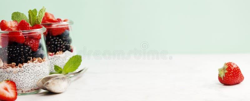 Chia sème le pudding et les baies de vanille photographie stock libre de droits