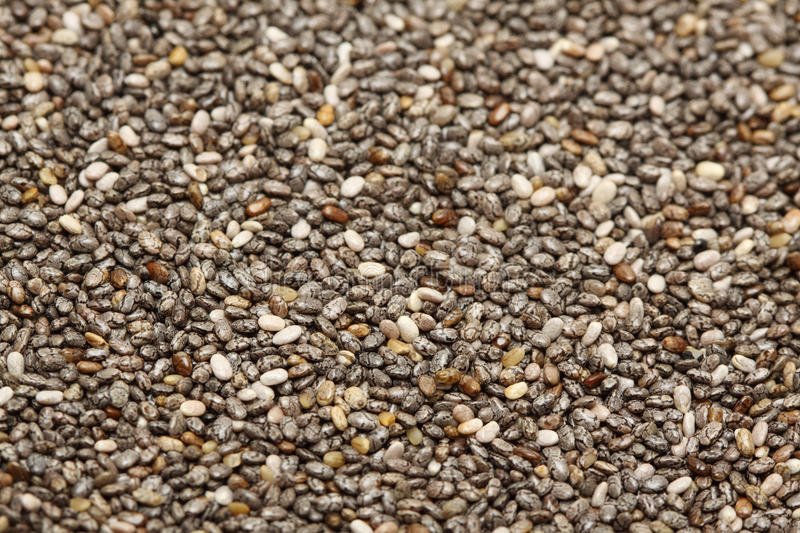 Chia seed. A macro shot of a heap of chia seed stock images