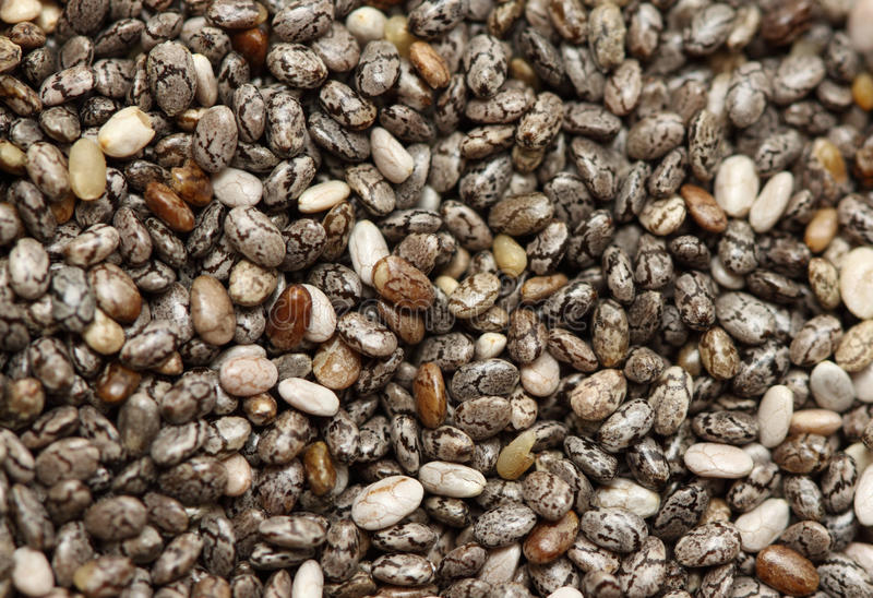 Chia seed. A macro shot of a heap of chia seed royalty free stock images