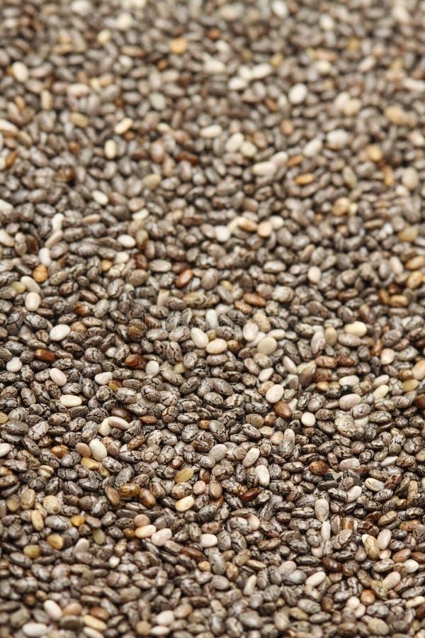 Chia seed. A macro shot of a heap of chia seed stock photo