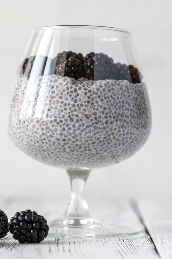 Chia seed pudding royalty free stock images