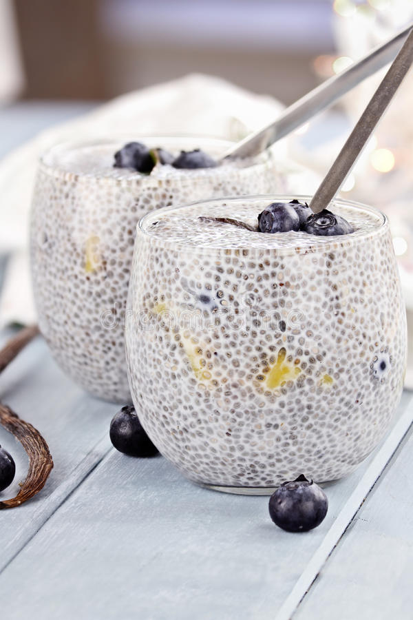 Chia Seed Pudding. Made with mangos and blueberries with extreme shallow depth of field royalty free stock photos