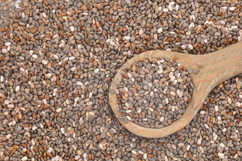 Chia Seeds. Closeup of Chia seeds (Salvia) with wooden spoon stock image