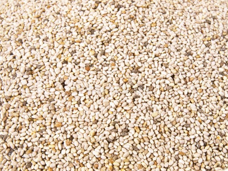 Chia Seeds - nutrizione sana fotografia stock libera da diritti