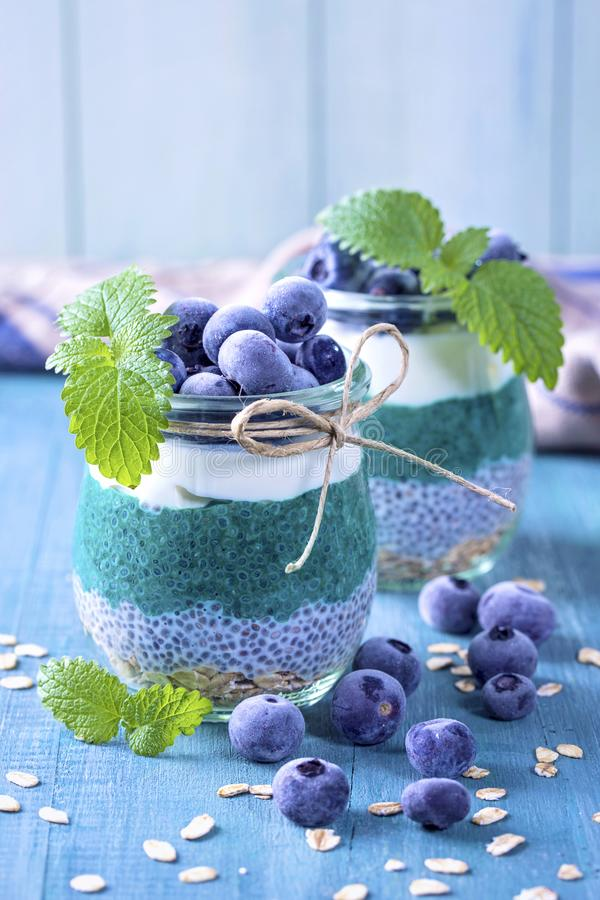 Chia seeds with spirulina pudding. With blueberries stock images