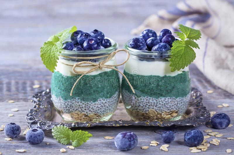 Chia seeds with spirulina pudding. With blueberries royalty free stock images