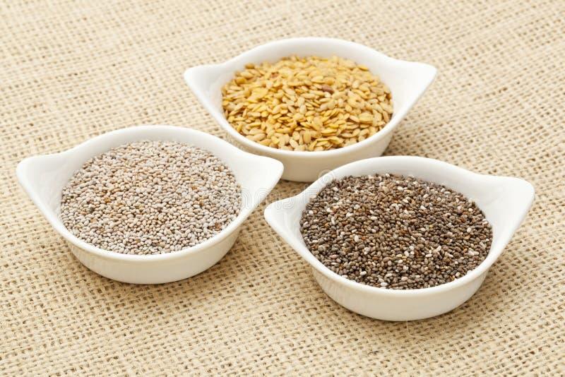 Chia y semilla de lino foto de archivo libre de regalías