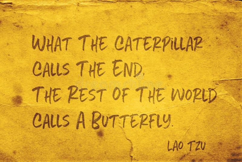 Chiama una farfalla Lao Tzu fotografia stock libera da diritti