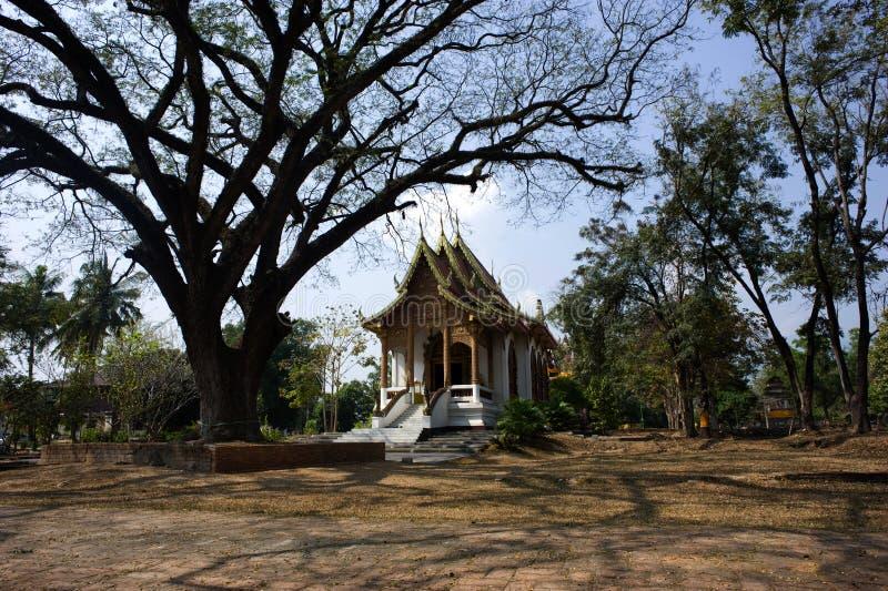chiang jed watyod för mai thailand royaltyfria bilder