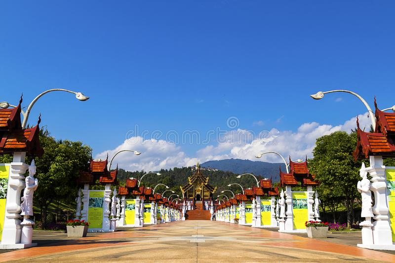 Chiang Mai, Tailândia JANEIRO, 7, 2018: Ho Kham Luang em Flor real foto de stock royalty free