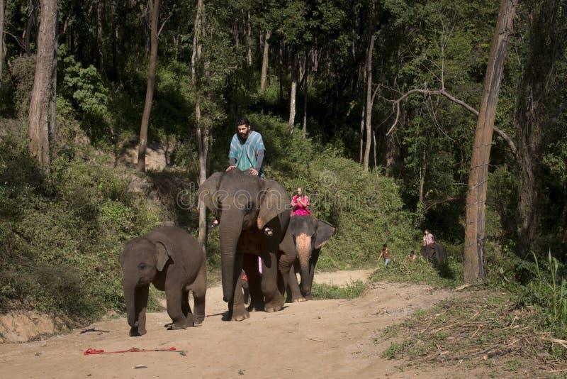 CHIANG MAI TAJLANDIA, JAN 9: Podróżnik i obrazy stock