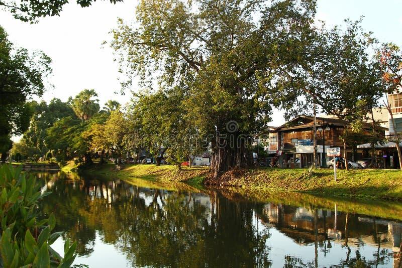 Chiang Mai Thailand - December 2, 2017: Sikt på en kanal med stora träd och låghus- hus arkivfoto