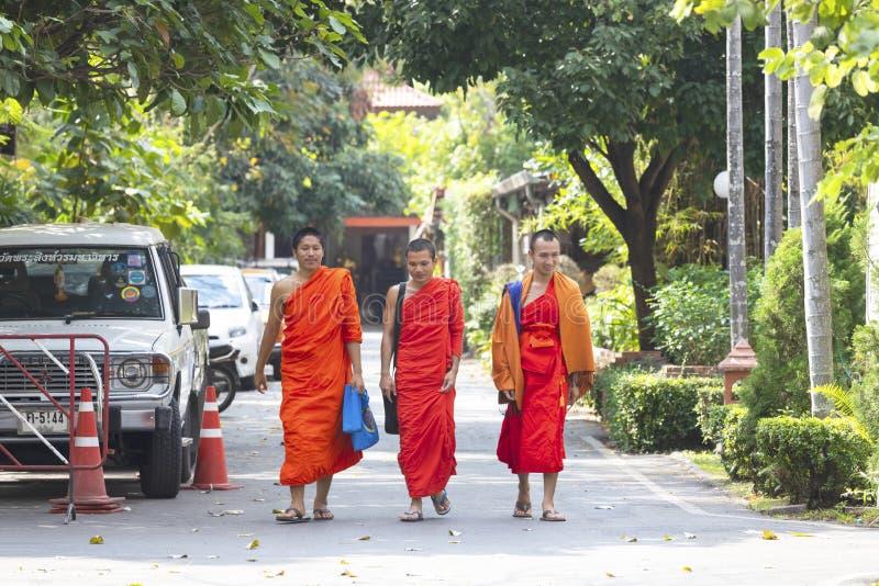 CHIANG MAI, THAILAND - 17. FEBRUAR 2019: Buddhistische Mönche gehen am buddhistischen Tempel in Chiang Mai stockfotografie