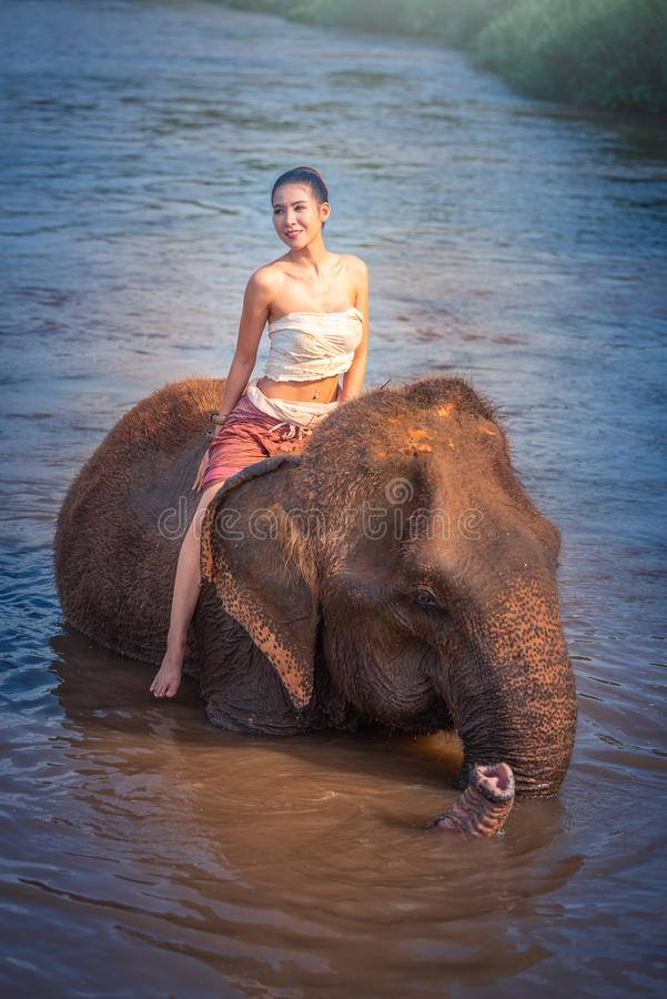 Chiang Mai, Thailand-May 13,2018: Young Asian Woman wearing Lanna traditional style costume with elephant in Chiang Mai, Thailand. royalty free stock photos