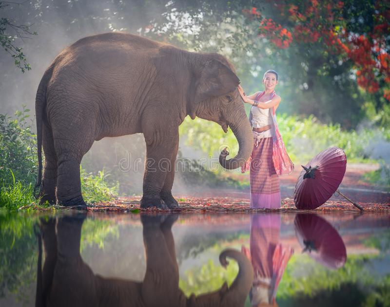 Chiang Mai, Thailand-May 13,2018: Young Asian Woman wearing Lanna traditional style costume with elephant in Chiang Mai, Thailand. royalty free stock photography