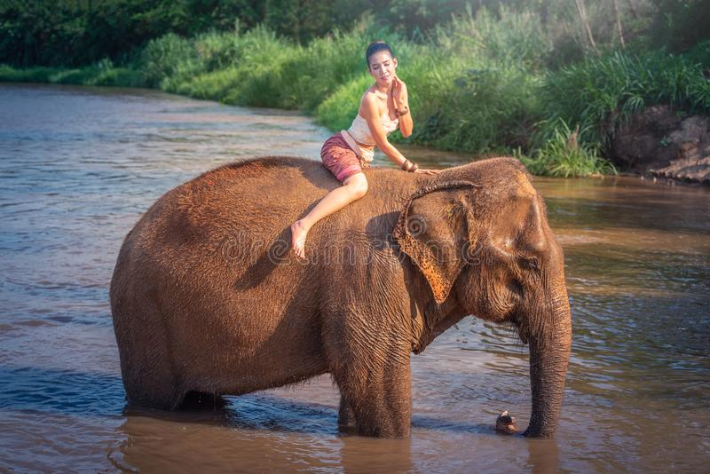 Chiang Mai, Thailand-May 13,2018: Young Asian Woman wearing Lanna traditional style costume with elephant in Chiang Mai, Thailand. royalty free stock image