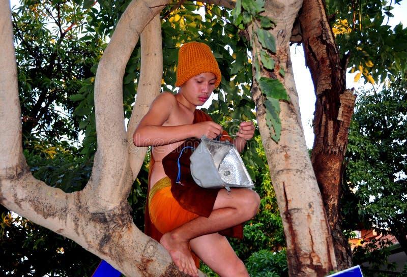 Chiang Mai Thailand: Ung Monk i en Tree royaltyfri fotografi