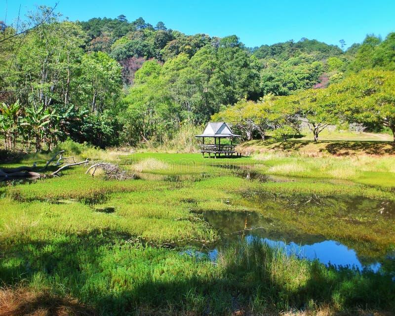Chiang Mai Valley Retreat fotografia stock libera da diritti