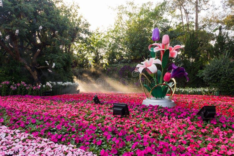 Chiang Rai Flower Festival fotografia stock libera da diritti