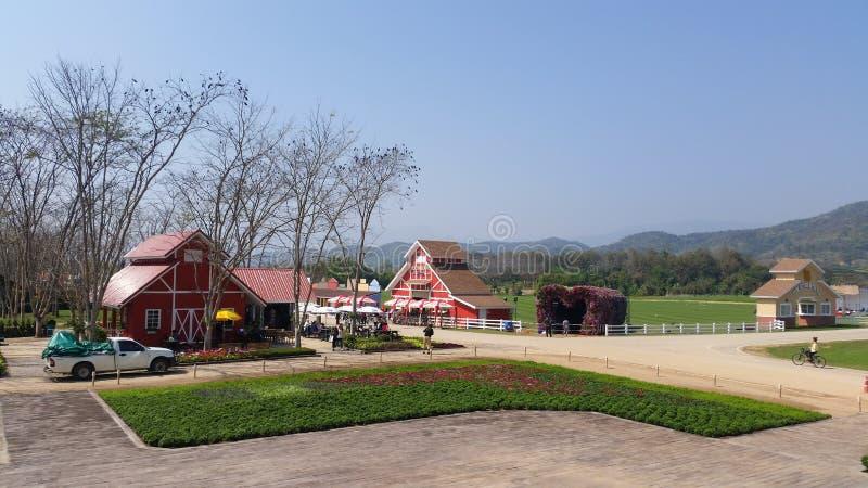 Chiang Rai, Tailândia - 8 de fevereiro de 2016: Atrações do parque de Singha, exploração agrícola do rawd do benefício em Chiang  imagem de stock royalty free