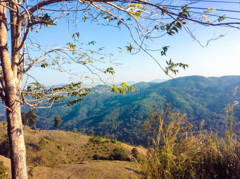 Chiangmai image libre de droits