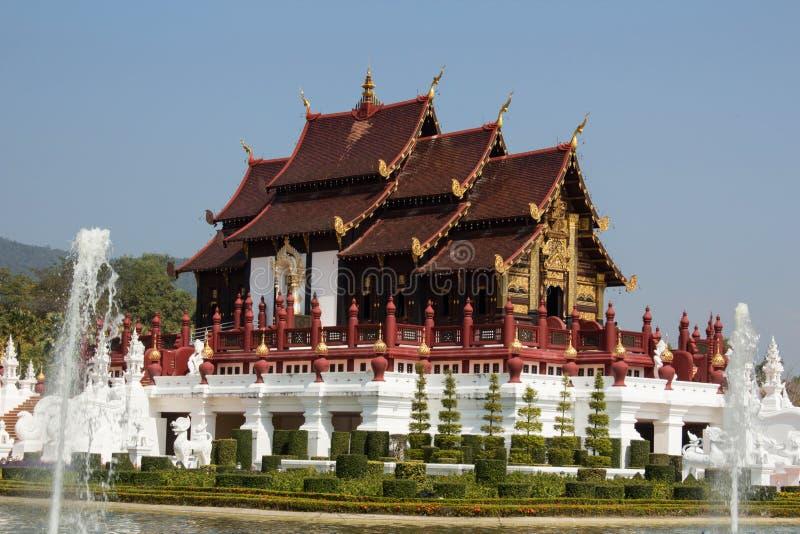 Chiangmai reale Tailandia di Flora Ratchaphruek immagine stock libera da diritti