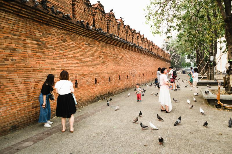 CHIANGMAI,THAILAND APRIL 9,2019 - Travellers and pigeons at Thapae gate ancient brick wall of Chiangmai royalty free stock photos