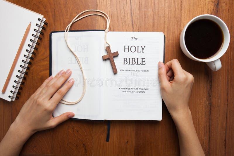 CHIANGMAI, THAILAND, 03,2015 Augustus Een vrouw leest de Nieuwe Internationale Versie van de Heilige Bijbel royalty-vrije stock foto