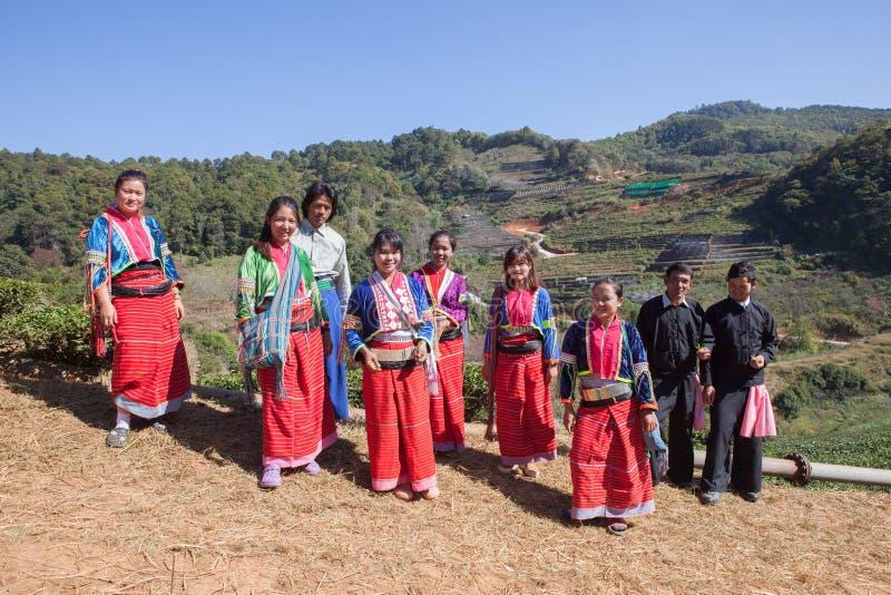CHIANGMAI THAILAND - JAN10: för stamfolk för kulle dara-ang harvesti fotografering för bildbyråer