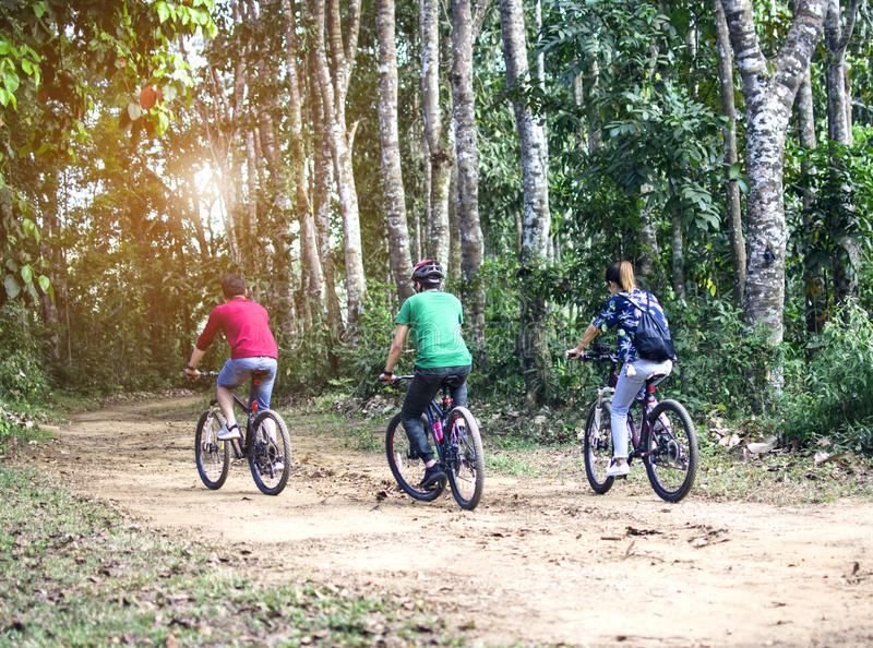 Young hipster tourist riding bicycles in the forest back to camera, Thailand royalty free stock images