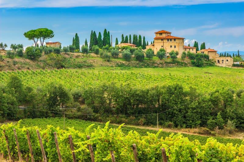 Chianti与石房子,托斯卡纳,意大利,欧洲的葡萄园风景 免版税库存图片
